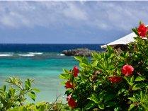 【シギラビーチ(リゾート内)】遠浅の穏やかな海を眺めながら、のんびりとリゾート気分を満喫。