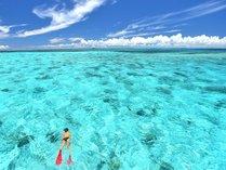【八重干瀬ボートシュノーケル】国内最大の珊瑚礁群「八重干瀬(ヤビジ)」でシュノーケル!