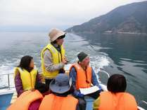 地元漁師が案内する海津大崎お花見船プラン