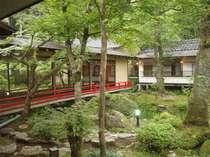 【中庭】四季折々の美しい自然を眺めることができる中庭。