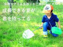 【夏休み限定】田舎の一軒宿ならでは☆昆虫採集プラン!お子様歓迎○【1泊2食付】じゃらん限定