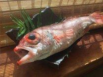 秋の富山湾の贅沢!最高級魚・のど黒を多彩な美味しさで愉しむ秋の極み会席