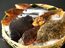 ◆口コミ料理部門4.5点。食材の安全性と鮮度の良質さを日々吟味