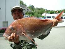 ★こんな大きな魚が近海で釣れます。釣り体験も出来ます