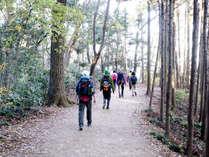 ◆1泊2食付◆身延山・奥の院へ!!トレッキングプラン
