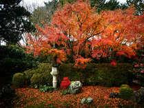 Kyoto_Autumn_4