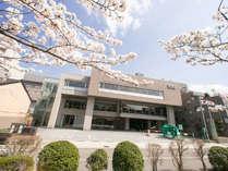 ホテル正面 桜の時期はおすすめです。