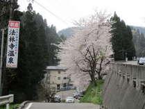 法林寺温泉入り口の坂道