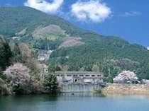 自然に囲まれた椿寿荘でゆったりと過ごしませんか。