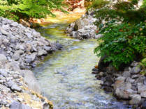 *【青荷川】川のせせらぎが心地よく聴こえます♪