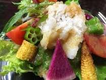 自家製ドレッシングで食べる「鱧(ハモ)と彩り野菜のサラダ」※鱧づくしプラン