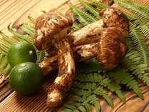【味覚】【紅葉】■松茸フェアPart(2)≪6種 松茸料理≫松茸三昧プラン