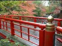 修善寺温泉街 桂橋 紅葉がとても美しいです。