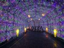 冬の風物詩「洞爺湖温泉イルミネーショントンネル」
