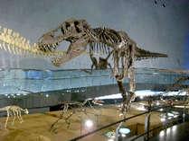 ■恐竜博物館■国内最大級の恐竜博物館!大人から子供まで楽しめますよ~★