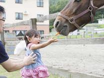 *施設/動物とのふれあい【実際にエサをあげたり間近でご覧になれます】