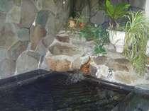 旅の疲れを癒す岩風呂