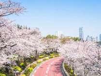 ●素泊り●お花見プラン!最短徒歩2分で赤坂サカスの花見スポットへ!