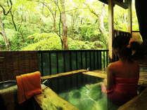 自然に包まれて、静かに流れる時間と湯浴みをお楽しみください。※渓流沿いのお部屋一例