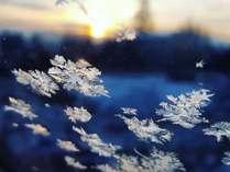 季節限定:冬季