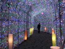 ◆冬季イベント:当館前のイルミネーション。光の回廊がとても綺麗