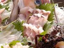 【食欲の秋】季節のお料理+特典→お刺身盛り合わせが嬉しい★秋プラン