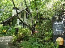 *外観/瑞々しい緑の森の中でペットと一緒に泊まれる一棟貸コテージ!
