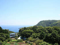 *【眺望】相模灘の青と美しい緑のコントラスト♪景色に心も癒されます。
