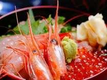 海鮮丼イメージ。丹後の海幸がギュっと詰まった一品です♪