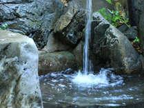 山鹿自慢の源泉。トロリとした美人の湯です。是非のんびりとお寛ぎ下さいませ。