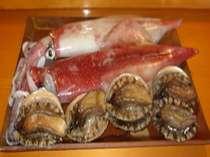 超特大マイカ(イカの王様はマイカ)・鮑。鮨屋ならではの最高のネタをご賞味にお寄り下さい!