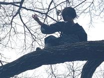 【木登り】コスプレ撮影の一コマです