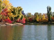紅葉で赤黄に色づく中島公園
