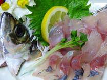 ★地元とれたて活魚と【陶板焼 】プラン