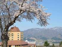雪解け交じりの春の舞子高原をご堪能あれ。