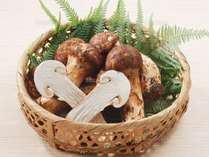 【秋の味覚】松茸+信州安曇野の味覚+老舗豆腐屋の豆腐料理+温泉を満喫プラン♪
