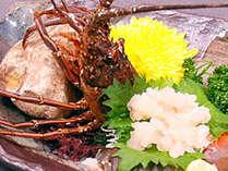 伊勢海老のお造り★プリップリ食感をお楽しみください♪