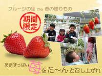 【期間限定!!】あまーぃ♪苺☆食べ放題◆割引券付き ~信州黒牛付会席コース~