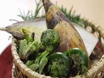 【旬の素材を楽しむ】1ヶ月の期間限定プラン・地元産竹の子をたっぷり味わう[竹の子づくし10品]