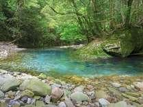 古座川ブルー