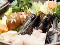 ≪幻の魚クエ≫最高級の白身で味がしっかりしているため、鍋物にピッタリ。