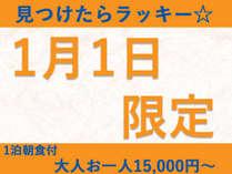 1月1日限定☆お部屋お任せ大人1名15,000円~