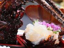 【和会席】ぷりぷりの食感と甘みが魅力「伊勢海老のお造り」(写真はイメージです)