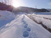 【冬季限定】当館でしか体験できない!選べる冬のアクティビティプラン