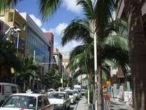 国際通りの一角。ヤシの木が南国の雰囲気を演出しています。