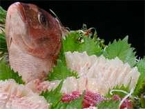 脂ののった桜鯛は絶品です☆