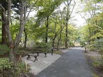 四季の森入口:足湯や展望台