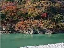【柏屋庭園:四季の森】足湯からの眺め (2015,10,30撮影)