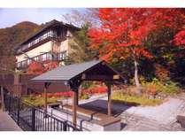 【庭園】四季の森(秋):紅葉を眺めながら足湯はいかがでしょうか