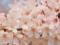 ◆◆早春の伊賀路へお越しください♪朝食付きカップルプラン◆予約日限定